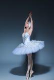 Portrait of the ballerina in ballet tatu on blue background Stock Photos