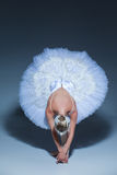 Portrait of the ballerina in ballet tatu on blue background Stock Photo