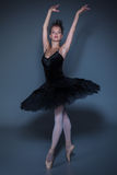 Portrait of the ballerina in ballet tatu on blue Royalty Free Stock Images