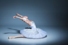 Portrait of the ballerina in ballet tatu on blue Stock Image