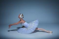 Portrait of the ballerina in ballet tatu on blue Royalty Free Stock Image