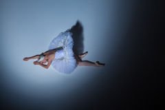 Portrait of the ballerina in ballet tatu on blue Royalty Free Stock Photography
