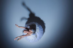 Portrait of the ballerina in ballet tatu on blue Royalty Free Stock Photos