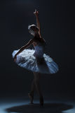 Portrait of the ballerina in ballet tatu on dack Stock Photos