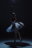 Portrait of the ballerina in ballet tatu on dack Royalty Free Stock Image