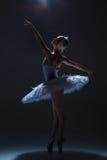 Portrait of the ballerina in ballet tatu on dack Royalty Free Stock Photos
