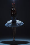 Portrait of the ballerina in ballet tatu on dack Royalty Free Stock Photography