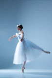 Portrait of the ballerina on blue background Stock Images