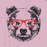Portrait of Bear with glasses. Hand-drawn illustration. T-shirt design. Vector Royalty Free Stock Photo
