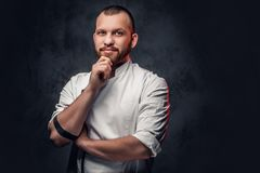 Portrait of bearded chef cook. stock image