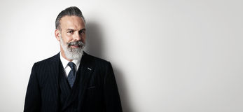 Portrait of bearded gentleman wearing trendy suit Royalty Free Stock Photos