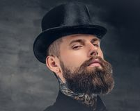 Brutal bearded male over grey background. Portrait of bearded hipster male dressed in a black shirt and a cylinder hat Royalty Free Stock Photography