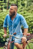 Portrait of a bearded male with a haircut dressed in casual clothes, drenched after rain in a park. Portrait of a bearded male with a haircut dressed in casual royalty free stock photo