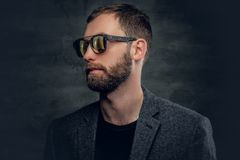 Bearded male in sunglasses. Portrait of bearded male in a suit and sunglasses Stock Photography