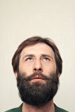 Portrait of the bearded man. The head of the man with a big beard Stock Photography
