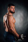 Portrait of a bearded man fitness model, torso. Dumbbell in hand, view from back. Gray background. Studio photography Royalty Free Stock Photo