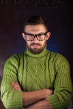 Portrait of a bearded man with glasses,. A mustachioed guy in a green sweater Royalty Free Stock Photo
