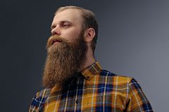Redhead male dressed in a yellow hipster shirt. stock photos