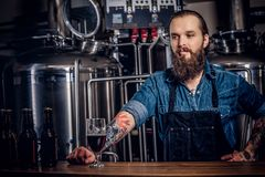 Portrait of a bearded tattooed hipster male in a jeans shirt and apron working in a brewery factory, standing behind a. Portrait of a bearded tattooed hipster Stock Images