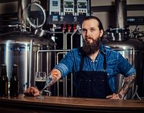 Portrait of a bearded tattooed hipster male in a jeans shirt and apron working in a brewery factory, standing behind a stock images