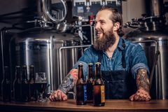 Portrait of a bearded tattooed hipster male in a jeans shirt and apron working in a brewery factory, standing behind a. Portrait of a happy bearded tattooed Royalty Free Stock Images