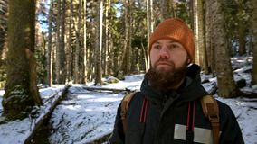 Portrait of a bearded young man with a backpack standing in a coniferous winter forest stock footage