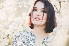 Portrait of beautiful Asian girl among cherry sakura blossoms Royalty Free Stock Image