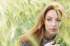 Portrait of beautiful attractive young woman in the autumn field Stock Image