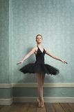Beautiful Ballerina in Dance Pose Stock Photography
