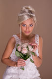 Portrait of beautiful blonde bride Stock Images