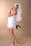 Portrait of beautiful blonde bride Stock Image