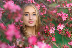 Portrait of a beautiful blonde girl with long hair and perfect make up among pink cherry blossoms in spring. Stock Images