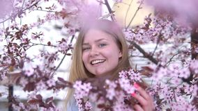Portrait of Beautiful blonde girl posing in blooming tree branches with pink flowers. Spring season stock footage