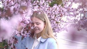 Portrait of Beautiful blonde girl posing in blooming tree branches with pink flowers. Spring season stock video