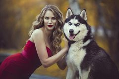 Portrait of a beautiful blonde girl in a red dress with a husky dog. Royalty Free Stock Images
