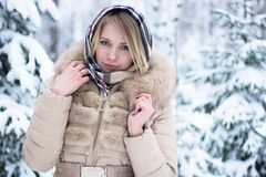 Portrait of a beautiful blonde in the winter Stock Photography