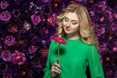 Portrait of a beautiful blonde woman  with gerbera flower on the wall. girl holding a flower Royalty Free Stock Images