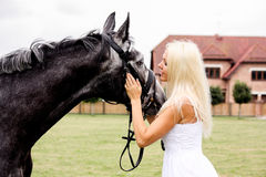 Portrait of beautiful blonde woman and gray horse at the wedding Royalty Free Stock Image