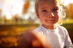 Portrait of beautiful boy child - Little boy in the autumn park royalty free stock photos