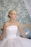 Portrait of a beautiful bride Stock Images