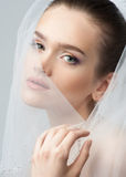 Portrait of a beautiful bride royalty free stock image
