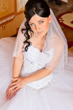 Portrait of a beautiful bride Stock Image