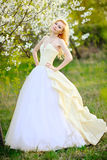 Portrait of a beautiful bride Royalty Free Stock Photos