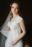Portrait of beautiful bride, blonde bride in elegant white wedding dress with veil posing in dark room, emotional face closeup. Amazing tender romantic moment stock photo