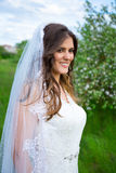 Portrait of beautiful bride in blooming garden. Portrait of beautiful bride in blooming summer garden Stock Photography