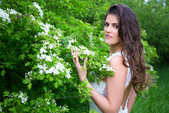 Portrait of beautiful bride in blooming summer garden Royalty Free Stock Images