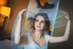 Portrait of a beautiful bride with bridal veil Stock Images
