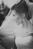 Portrait of a Beautiful Bride Close up glowing from the sun light Stock Photos