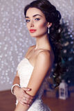 Portrait of beautiful bride with dark hair in elegant wedding dress Stock Images