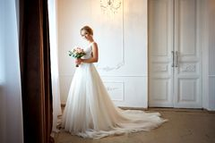 Portrait of the beautiful bride royalty free stock image